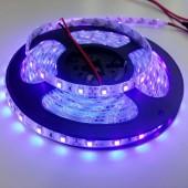 5 Meters Purple Waterproof 3528 Led Strip Lights Strip 60Leds/M